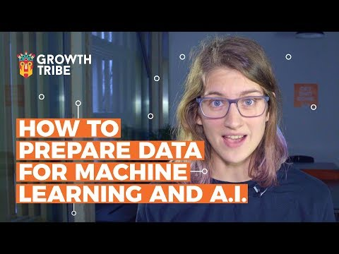 How To Prepare Data For Machine Learning And A.I.