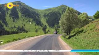 Yavuz Yaylası Yavuzköy Şavşat Yolu Sahası Doğası - Artvin 4K UHD