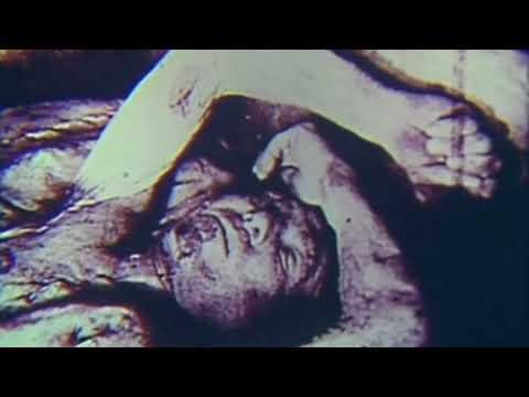 The Holocaust - Extermination Camp Film Footage