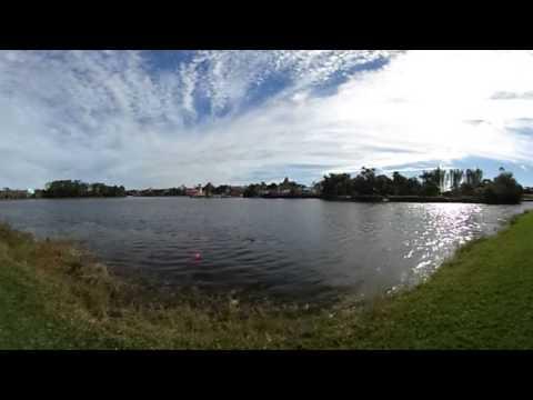 Disney's Caribbean Beach Resort - 360 Degree Aruba Lake View