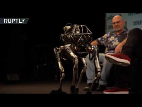 Download Youtube: 'Kind of a show-off': Meet 'Spot Mini', the dog-like robot.