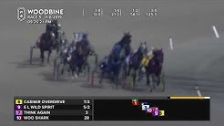 Woodbine, Mohawk Park, November 8, 2019 Race 5