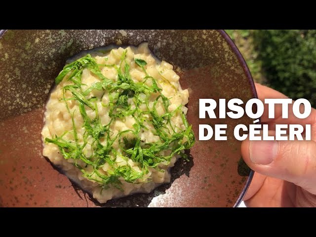 RISOTTO DE CÉLERI by Nicolas Masse