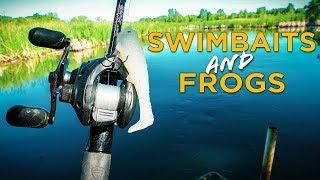 Fishing Frogs & Swimbaits For BIG BASS w/ MinnDak Outdoors!