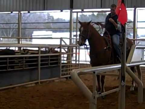 Steve And NRS Roping Clinic - Decatur, TX