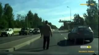 Животные на дороге и добрые, заботливые автомобилисты