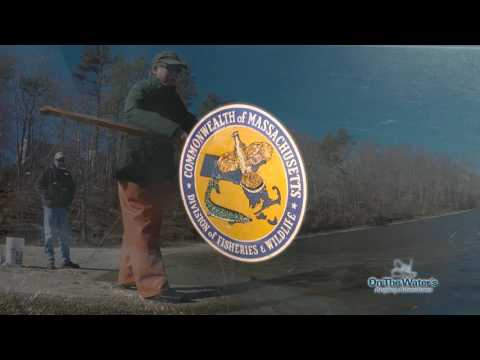 Cape Cod Kettle Pond Trout | S14 E8