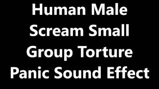 Human Male Scream Small Group Torture Panic Sound Effect