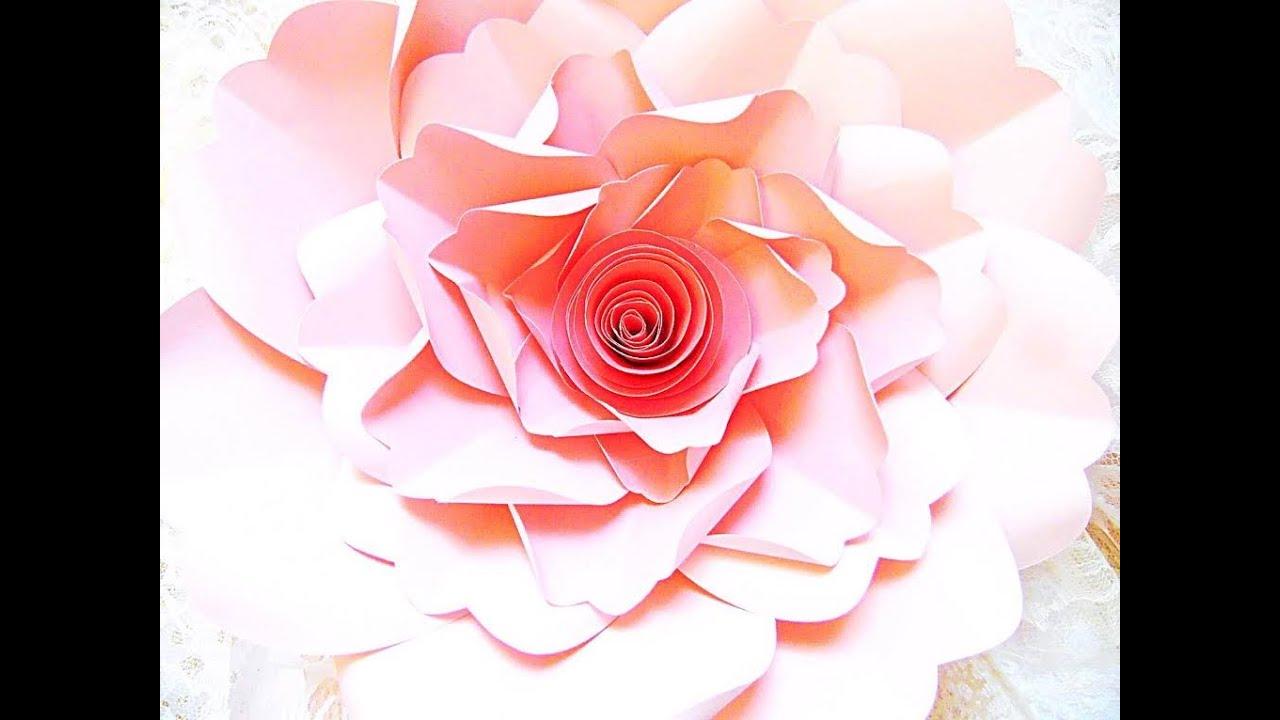 Giant Paper Flower Charlotte Style Youtube