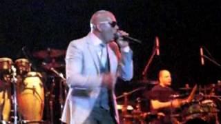 pitbull concert jakarta - watagatapitusberry (live)