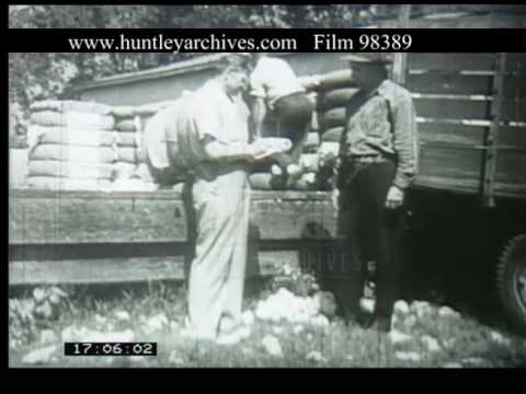 Laurel Mississippi And Cotton Manufacturing, 1940s - Film 98389