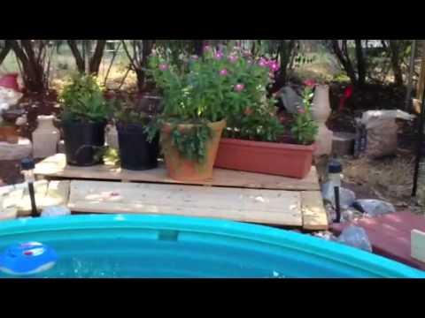 Inground pool in a weekend
