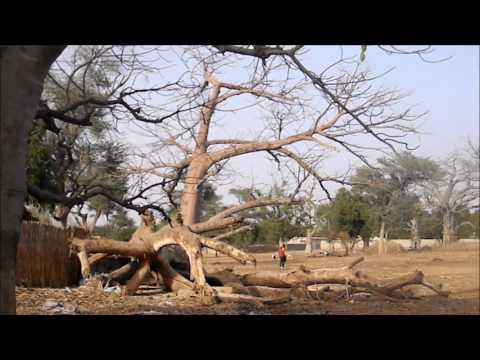 Water Well بئر | Senegal, Dakar, Bambay (Africa)