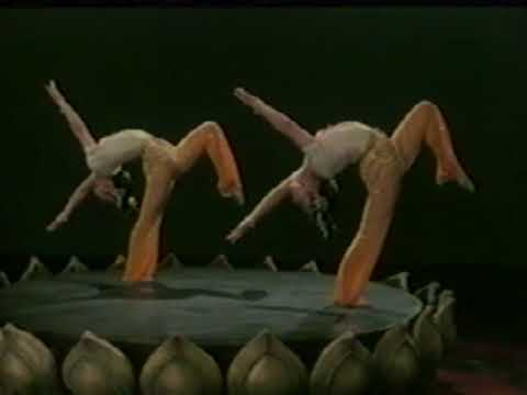 1970s Chinese acrobats VHS tape