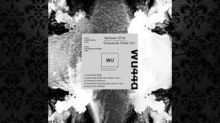 Splinter (UA) - Camomile Field (Original Mix) [WARM UP RECORIDNGS]