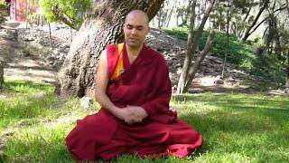 (1/2) Guía básica de meditación con el Ven. Lobsang Tonden thumbnail