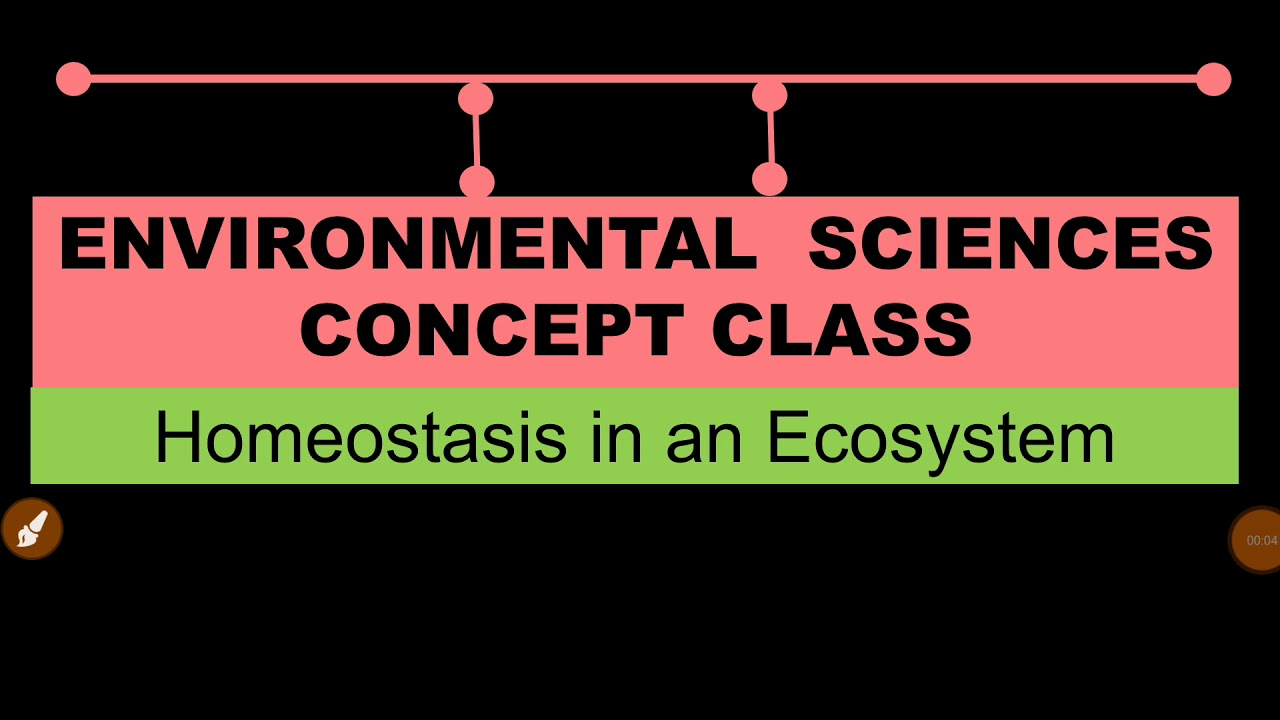 Homeostasis In An Ecosystem Basics Of Environmental Sciences Mind