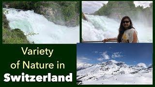Beauty of Switzerland || Day Trips from Interlaken || Rhine Falls in Switzerland