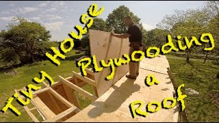 Tiny House - Roof Plywood