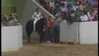 Stacy Westfall Championship Bareback & Bridleless Freestyle Reining with Roxy