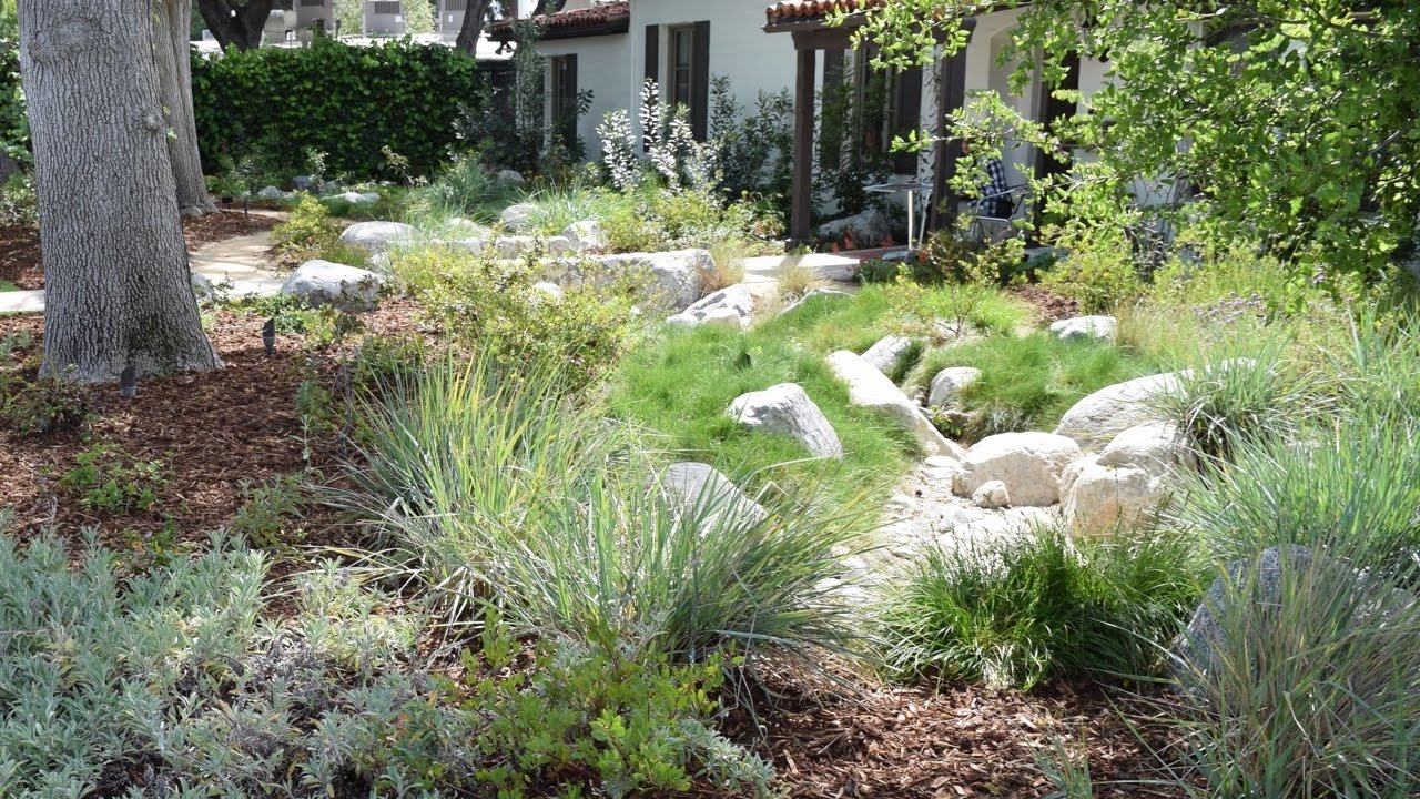 Retrofit to Dry Shade California Native Plants California Native