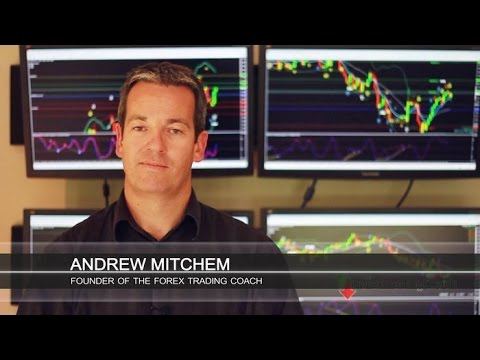 Forex trading coachandrew mitchem