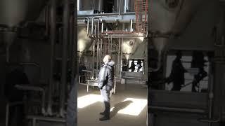 Cave à levure de la Brasserie nationale