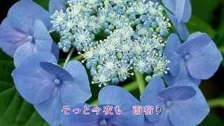 夏木綾子 - あじさい雨情
