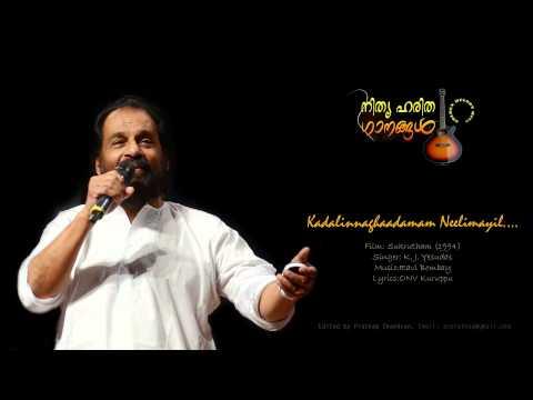 Kadalinnagadhamam Neelimayil.....by K.J Yesudas