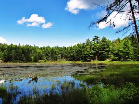 Acadia National Park, 2013