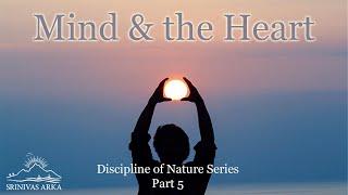 'Mind & The Heart' - Discipline of Nature Series Part 5 by Srinivas Arka