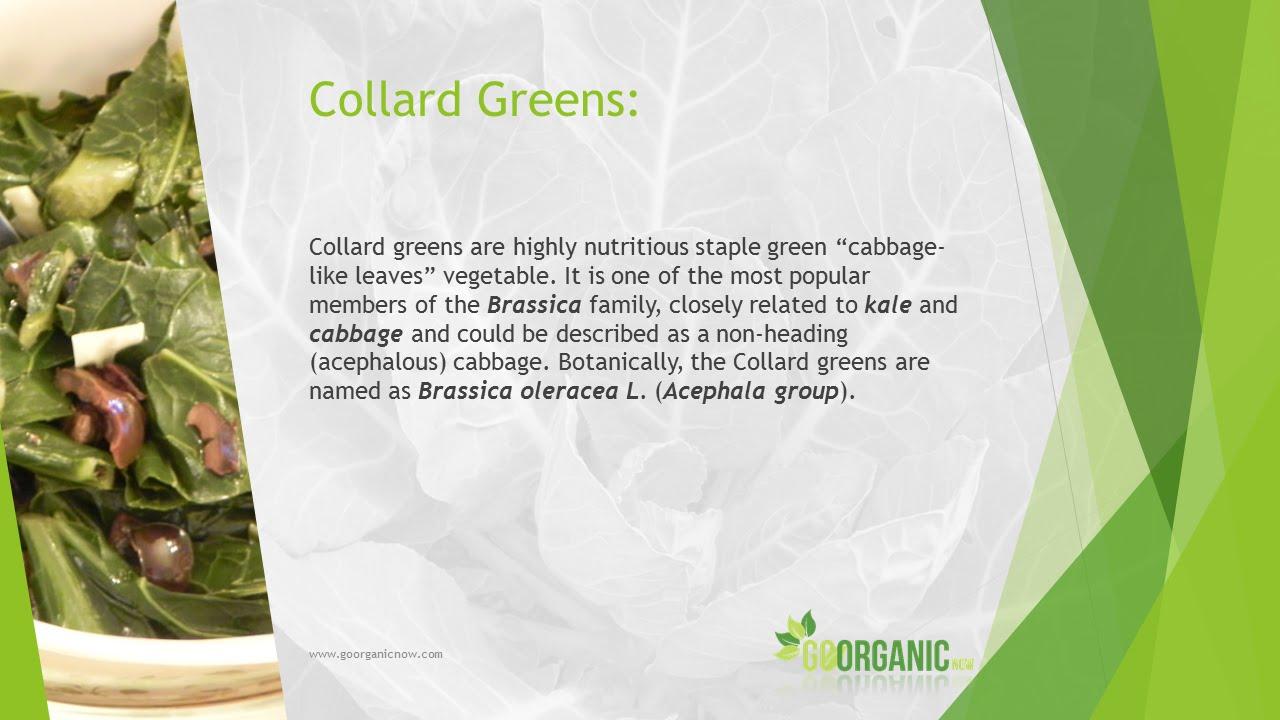 Health Benefits of Collard Greens - YouTube