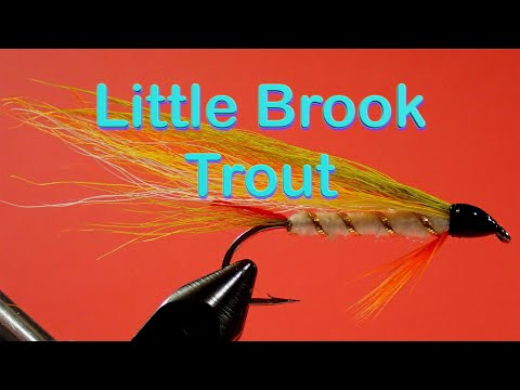 The Beginner's Fly Tying Series: Easy Streamer Series - The Little Brook Trout