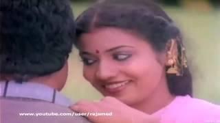 Tamil Song   Dharma Pathini   Naan Thedum Sevvanthi Poovithu HQ