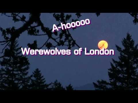 WARREN ZEVON  Werewolves of London