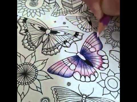 Butterfly Vuong Quoc Muon Loai Coloring Book
