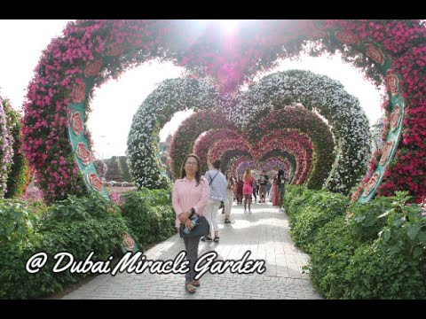 Dubai Miracle Garden with my mom