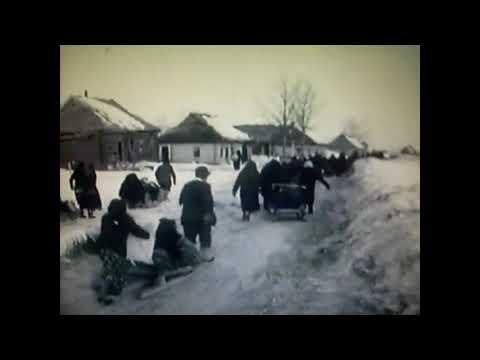 Освобождение Сычевки (1943 год)