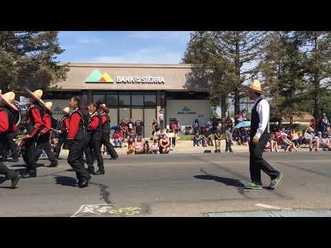 Washington Intermediate Band @ Cinco De Mayo Parade