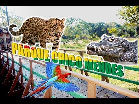 SALVE A AMAZÔNIA PARQUE CHICO MENDES | CAPITAL DE RIO BRANCO - ACRE ?? | TURISMO NO BRASIL