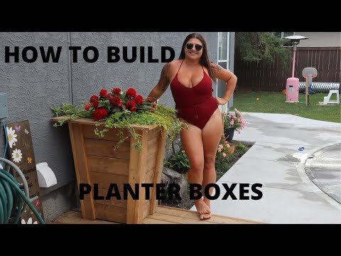 how-to-build-a-planter-box-for-flowers-the-easy-way