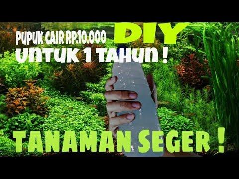 DIY pupuk cair aquascape + hasil akhir - YouTube