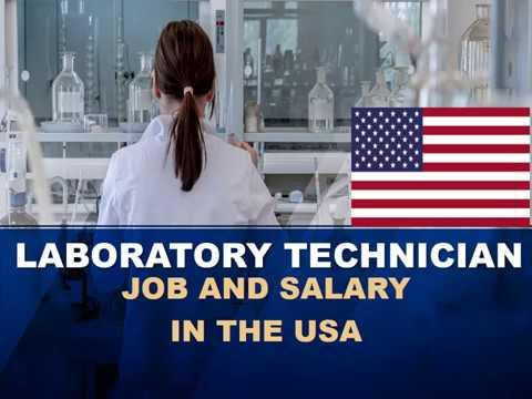 Laboratory Technician Salary In The United States - Jobs And Wages In The United States