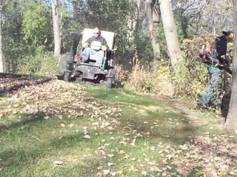 Ring Lawn Care Youtube