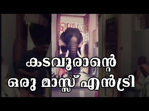 Thrikkadavoor Sivaraju Mass Entry | Audio: Poothan Aattam
