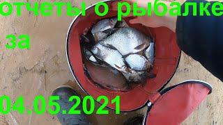 РЫБАЛКА ОТЧЕТЫ О РЫБАЛКЕ ЗА 04.05.2021 ФИДЕР ВОЛГА