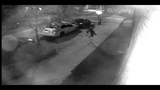 Exclusive video from The New York Post of an alleged graffiti vandal