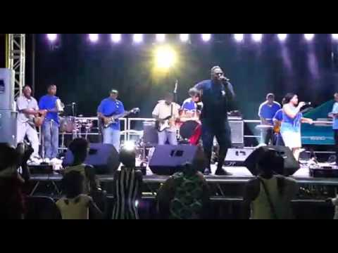 Synergy Band & Blaudy @ The Power Of One Concert