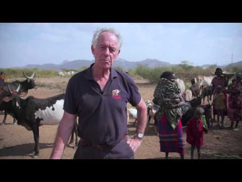 SPANA starts emergency animal feeding programme in Ethiopia