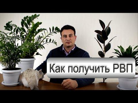 Как получить РВП в России? Переезд в Россию. Миграционный адвокат